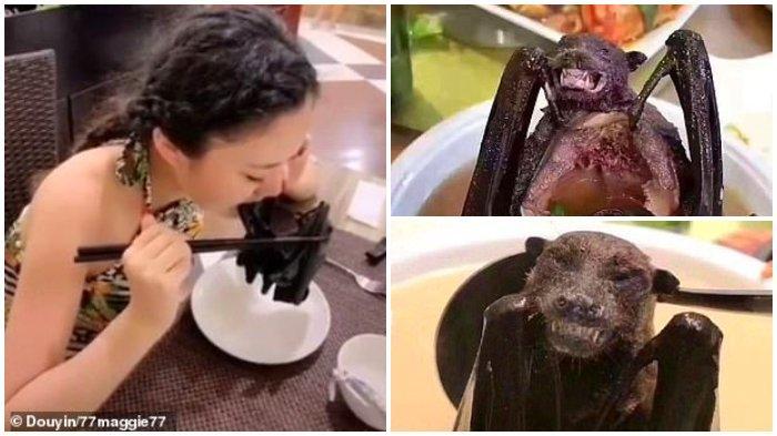 Inilah 7 Kuliner Liar di Pasar Wuhan, Ada Tikus Sampai Testis Banteng!